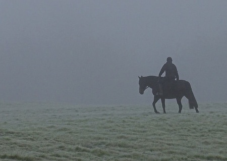 Riding horse in the mist